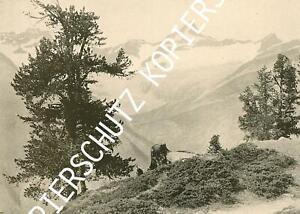 Wallis - Bei Zermatt - Gipfelbild - um 1910           X 47-11
