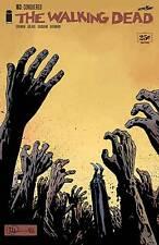 Walking Dead #163 Robert Kirkman Charlie Adlard Image 1st Print NM
