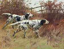 Ilustrado Libro De Perro 2 110 A4 Foto impresión
