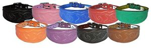 Leather Dog Collar Whippet Collar Greyhound Collar Padded Embossed Stitch Design