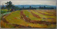Russian Ukrainian Soviet Oil Painting impressionism landscape village field