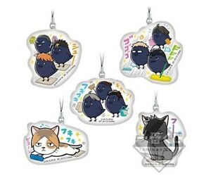 NEW Haikyuu!! Screen Cleaner Mascot Cell Phone Strap F Prize Official Japan