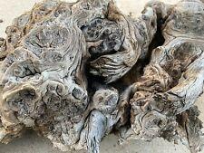 New listing Arizona Mesquite Burl Driftwood