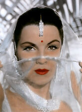PHOTO LE TIGRE DU BENGALE -  DEBRA PAGET - 11X15 CM  # 3