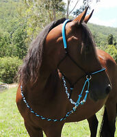 Bitless bridle/ RIDING HALTER, Adjustable sidepull, black and Aqua blue,ss rings