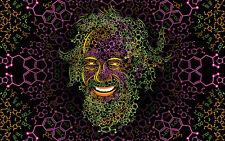 UV Backdrop Alexander Shulgin Psy Deko Wandbehang 1m x 1,6m Hippie Goa Tuch Bild
