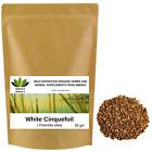 Potentilla alba Root, White Cinquefoil, Wild Harvested Organic