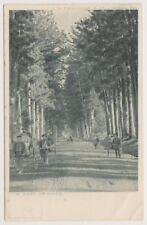 Japan postcard - The Road to Nikko