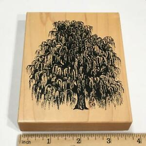 PSX Weeping Willow Tree Rubber Stamp K1455