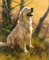 ZOPT947 modern animal dog in forest painted hand oil painting art on CANVAS