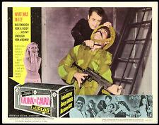 "1966 Trunk To Cairo Lobby Card (14""x11"") Neo Nazi International Espionage"