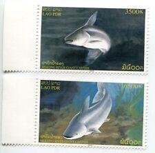 LAOS STAMP 2005 MEKONG RIVER GIANT CATFISH LAO BIG FISH 2v MNH