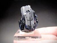 Azurite Crystals, Tsumeb Mine, Namibia