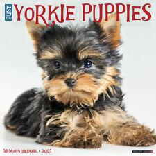 Just Yorkie Puppies (dog breed calendar) 2021 Wall Calendar (Free Shipping)