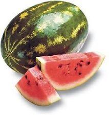 CRIMSON SWEET WATERMELON Melon 10 Seeds