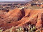 Painted Desert Treasures