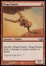 MTG 1x MOGG FANATIC - Elves vs. Goblins *NM*