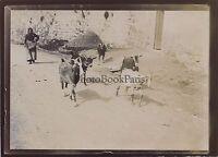 San Gimignano Italia Foto Amateur Vintage Citrato