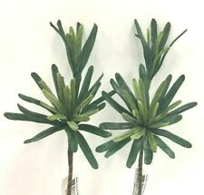 """Succulent Foliage Stems~SET of 2~PVC/Artificial~Two Tone Green~15""""T"""