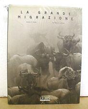 La Grande Migrazione The Great Migration Photographs Carlo Mari Signed 1999 HBDJ