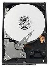 "Western Digital 500 GB,Internal,3.5"" (WD5000AVCS) Hard Drive"