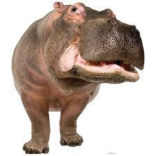 HIPPOPOTAMUS CARDBOARD CUTOUT Standee Standup Poster Prop Hippo FREE SHIPPING