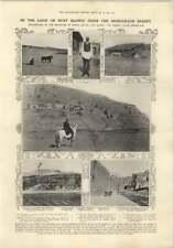 1910 NUOVO MODELLO DI DISEGNO Pauls Cross, Robert Clark Expedition mongolo Desert