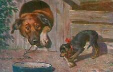 Rare Dog Postcard Miniature Pinscher & Pal Star of David 1908 Heartwarming