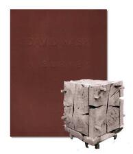 David Nash : A Survey : Limited Ed. Exhibition Cat : 907282802X (Tree Sculpture)
