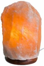 HemingWeigh 13-19lb Rock Salt Lamp on Wood Base, Electric Wire & Bulb Included