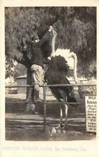 RPPC Cawston Ostrich Farm, South Pasadena, California ca 1920s Vintage Postcard