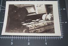 Scared Rabbits in Pen Bunny Rabbit Pet White Animal Cage Vintage Snapshot PHOTO