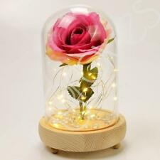 Blush Pink Handmade Enchanted Rose in Glass Dome Bell Jar With LED Lights