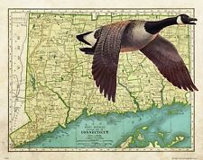 Vintage Goose Duck Hunting Connecticut State Map Art Print Calls Decoys DU MAP35