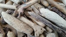 Driftwood Cornwall - Beach Found -  For Picture Frames 100 Cute Artistic Pieces