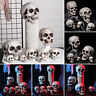 All Size Human Skull Head Skeleton Halloween Style Prop Home Party Bars Decor