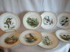Edward Marshall Boehm WaterBird of North America Plate Collection 8 Mint Plates