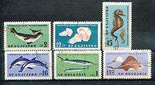 Bulgarije 1243 - 1248 gebruikt  Vissen en zeedieren