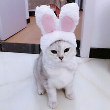 Wearable Costume Cat Hat Pompompurin Costume Cosplay Rabbit Kitty Hat Clothes