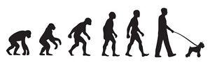 Schnauzer Dog Walker 'Evolution' car sticker, vinyl decal
