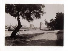PHOTO ANCIENNE La Rochelle - Le port - Arbre 1907 - Tirage d'époque Chemin