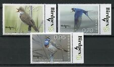 Luxembourg 2018 MNH Rare Birds Birdpex 3v Set Warblers Swallows Bird Stamps