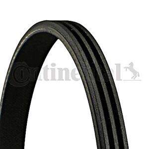 CONTITECH V-Ribbed Belt For MG Mg Zt Zt- T Estate Saloon 1.8L V8 V6