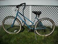 Vintage Schwinn Cruiser Bicycle