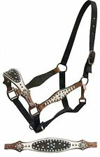 SHOWMAN Belt Style Halter w/ WHITE & DARK Leather & TURQUOISE Studs! HORSE TACK!