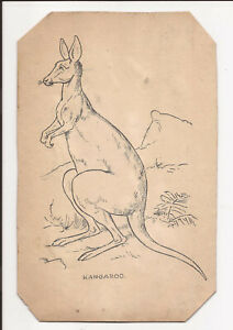 KANGAROO ORIGINAL PEN AND INK DRAWING UNSIGNED LATE C19th OR EARLY C20th