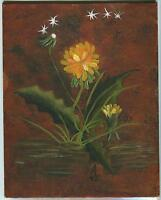 VINTAGE GARDEN DANDELION FLOWERS SEEDS WISH BLOW WIND NATURE BOTANICAL PAINTING