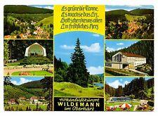 Hohenluftkururt Wildemann im Oberharz Germany Postcard Goslar Lower Saxony
