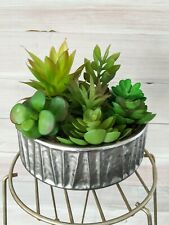 Faux Potted Succulents Farmhouse Rustic Cute Greenery