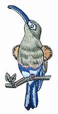 "#4313 3-5/8"" Sunbird Bird,Tropical Bird Embroidery Iron On Appliqué Patch"